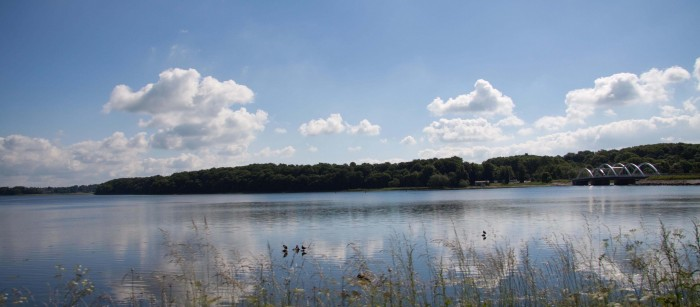 Fjorden i stille vejr
