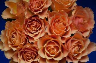 Blomsterdeko Buket