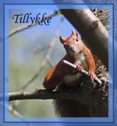 Kort Egern Tillykke