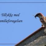 Familieforøgelse