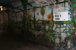Neals Yard no.01